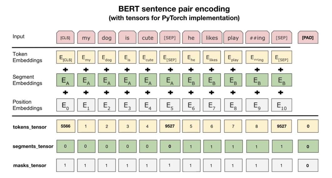 Pytorch Bert Example